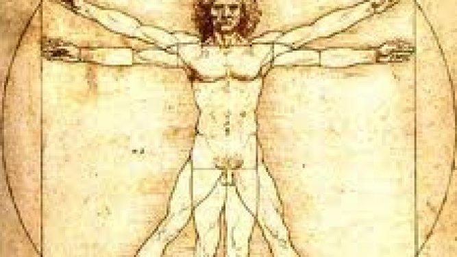 Vocabulario: Partes del Cuerpo (Body Parts) en Inglés–De Básico a Avanzado