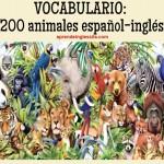 Lista de vocabulario: 200 animales español-inglés (con pronunciación)