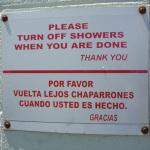 Traductor automático, YES or NO?